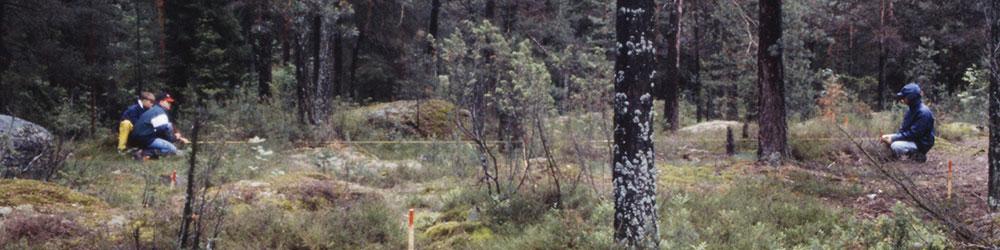 arkeologisia mittauksia metsässä
